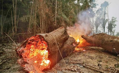 amazon_forest_fire-4.jpg