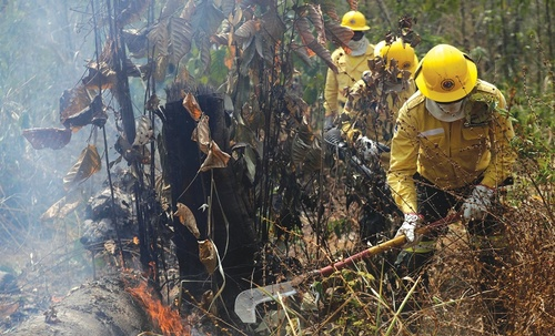 amazon_forest_fire-5.jpg