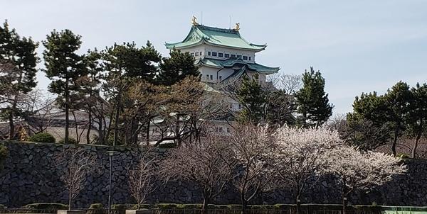 nagoya_castle-8.jpg