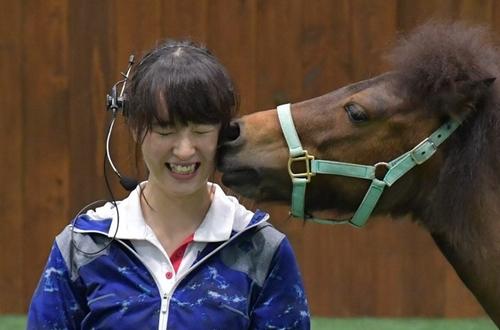 nanako_northern_horsepark.jpg