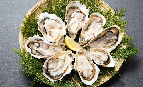 oyster_oct-1.jpg