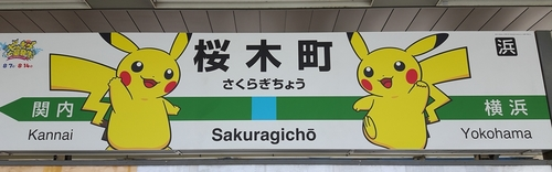 pikachu-landmark-74.jpg