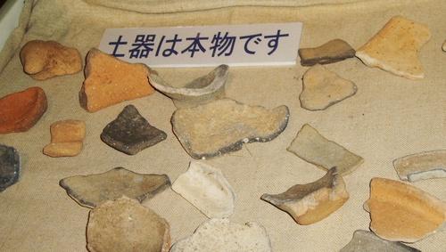 yoshino_doki1.jpg